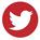 Round Icon | Red | Twitter